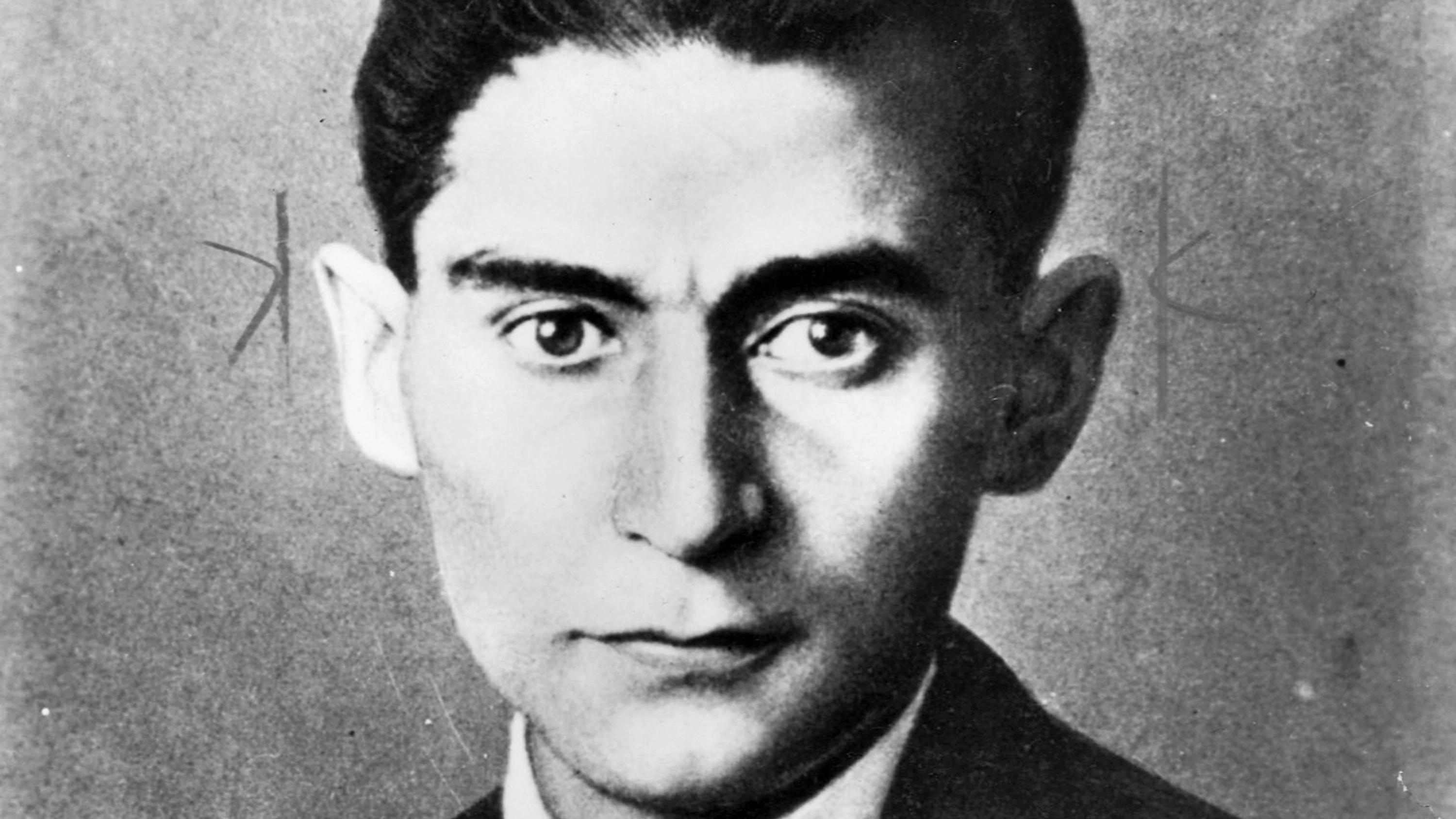 The Burrow by Franz Kafka | Saturday Review | The Times