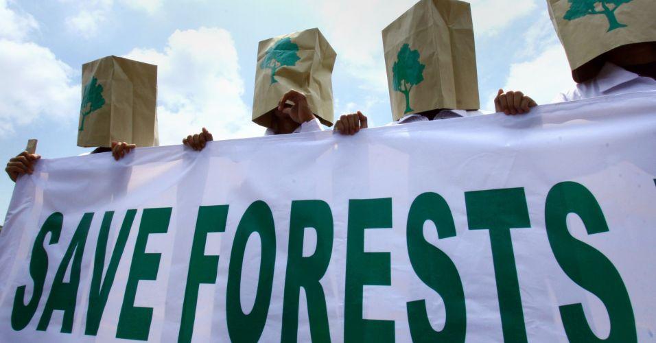 O que São Ativistas Ambientais? | Meio Ambiente - Cultura Mix
