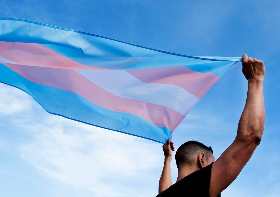 O juiz do Tribunal Distrital dos Estados Unidos, Frederic Block, citou a decisão da Suprema Corte em junho sobre discriminação no emprego, enquanto impunha uma liminar sobre uma nova regra do HHS que reverteria as proteções para pacientes transgêneros em todo o país.