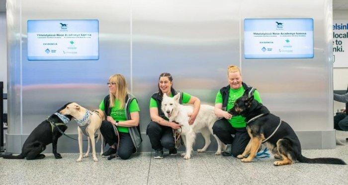 aeroporto de cães