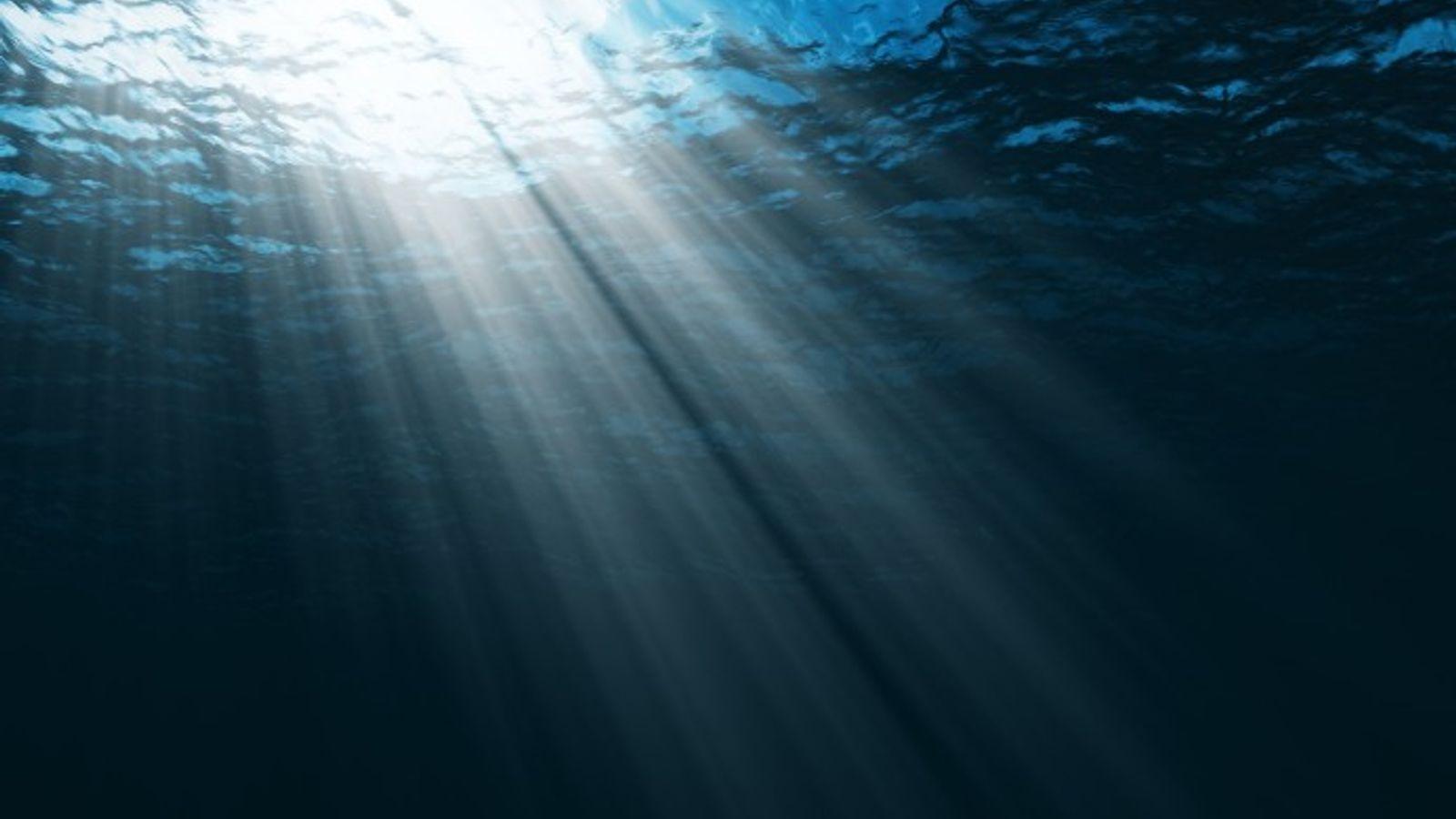 10 Formas de Contribuir para Salvar os Oceanos | National Geographic