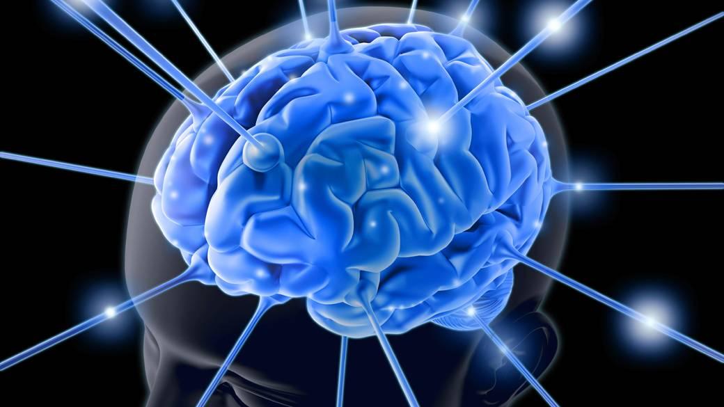 Cérebro guarda dez vezes mais memórias do que se acreditava, diz estudo |  VEJA