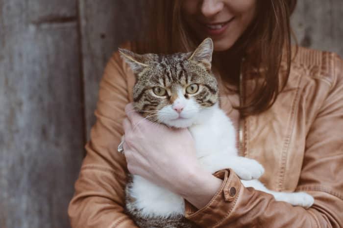 Estudo revela que donos de gatos são mais propensos a ter esquizofrenia | Familia