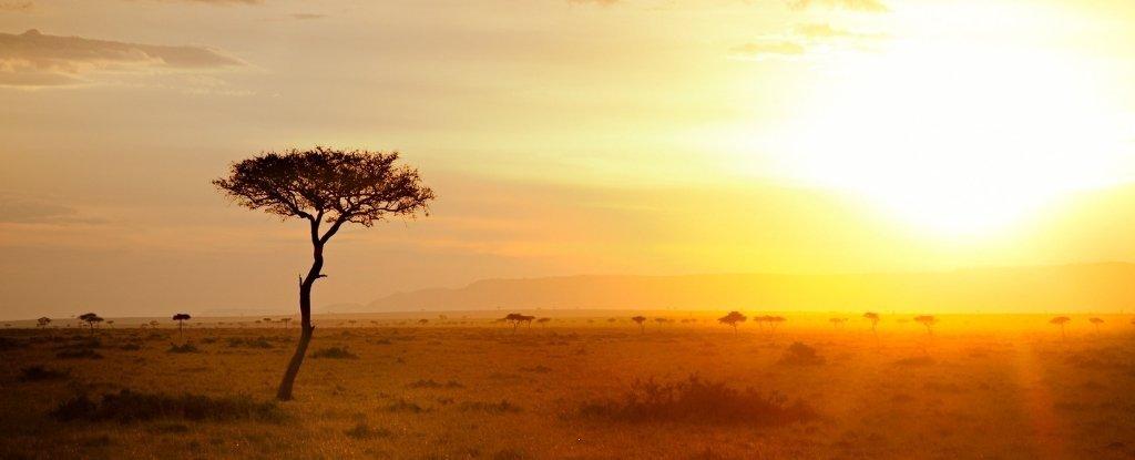 Ambiente de 320.000 anos atrás da terra qualificada os humanos a se adaptarem