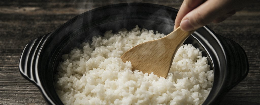 Cientistas dizem que este novo truque para cozinhar arroz remove o arsênico, mas mantém os nutrientes