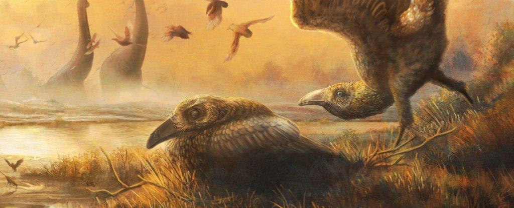 É encontrado fóssil de tucano que viveu entre os dinossauros