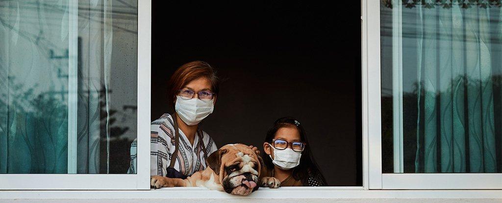 Se você tem COVID-19, o estudo nos EUA mostra que 50% de sua família ficará doente em alguns dias