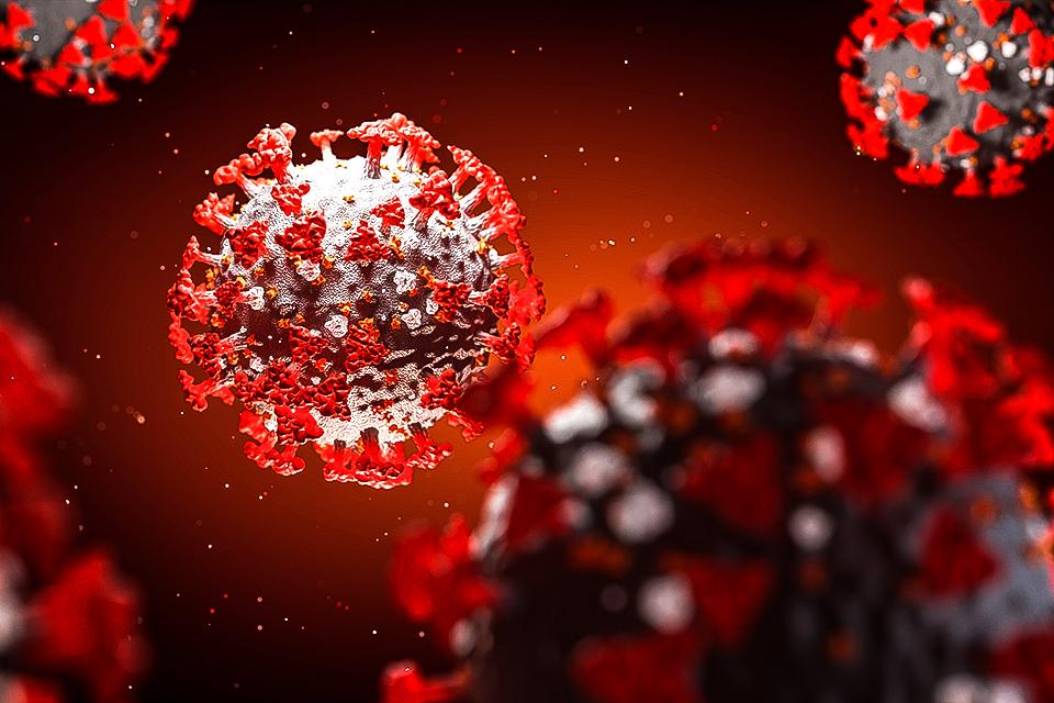 SARS-CoV-2 pode invadir o cérebro pelo nariz, revela estudo