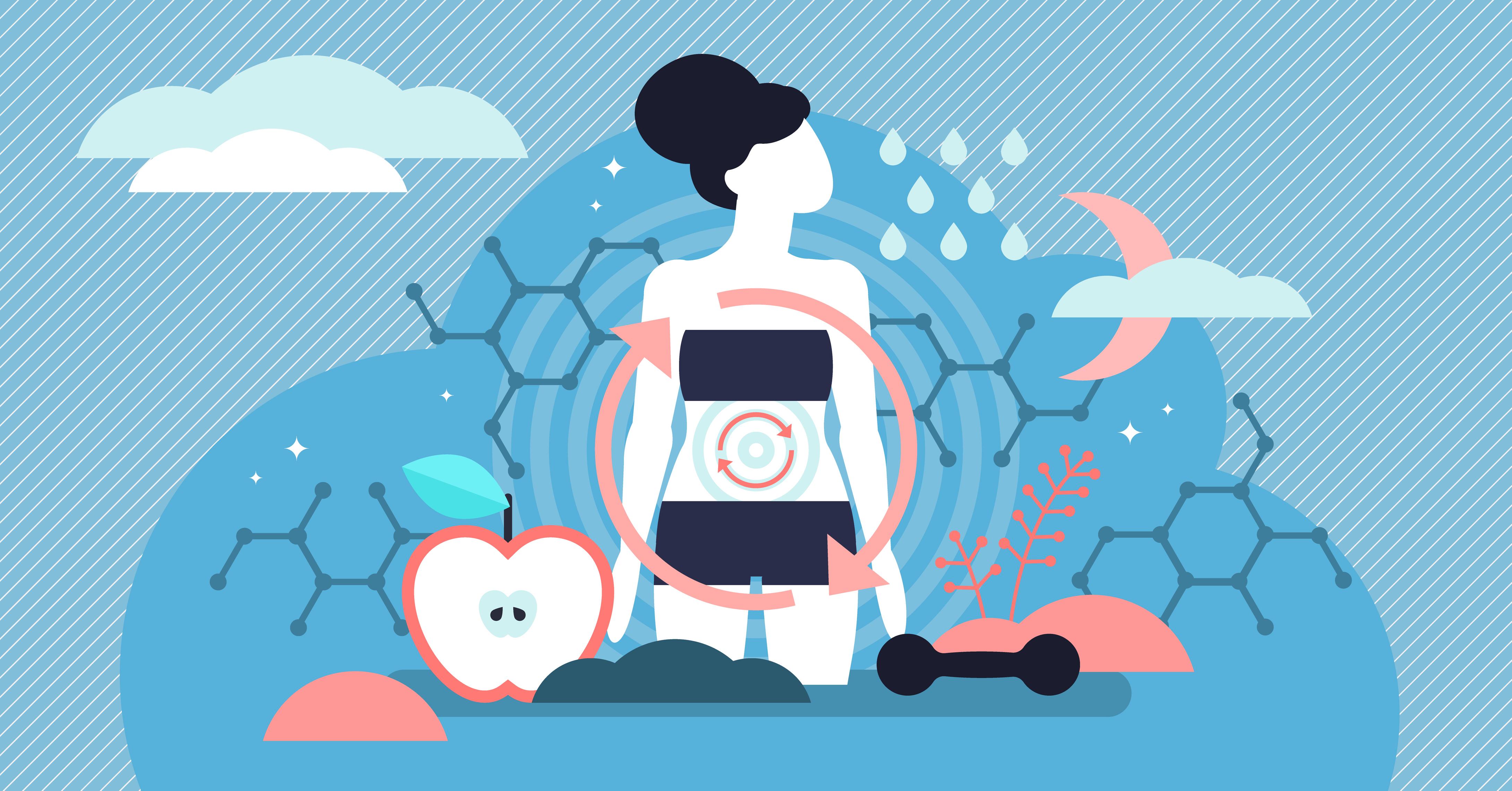Acha que seu metabolismo está lento? Aqui está o que afeta quantas calorias você queima diariamente